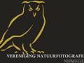 logo-voor-web-geel-585_w230
