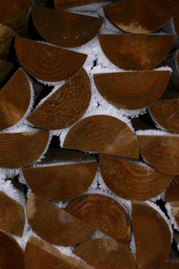 Holz mit Reif-2