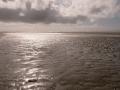 Jelle landschap-wijkaanzee