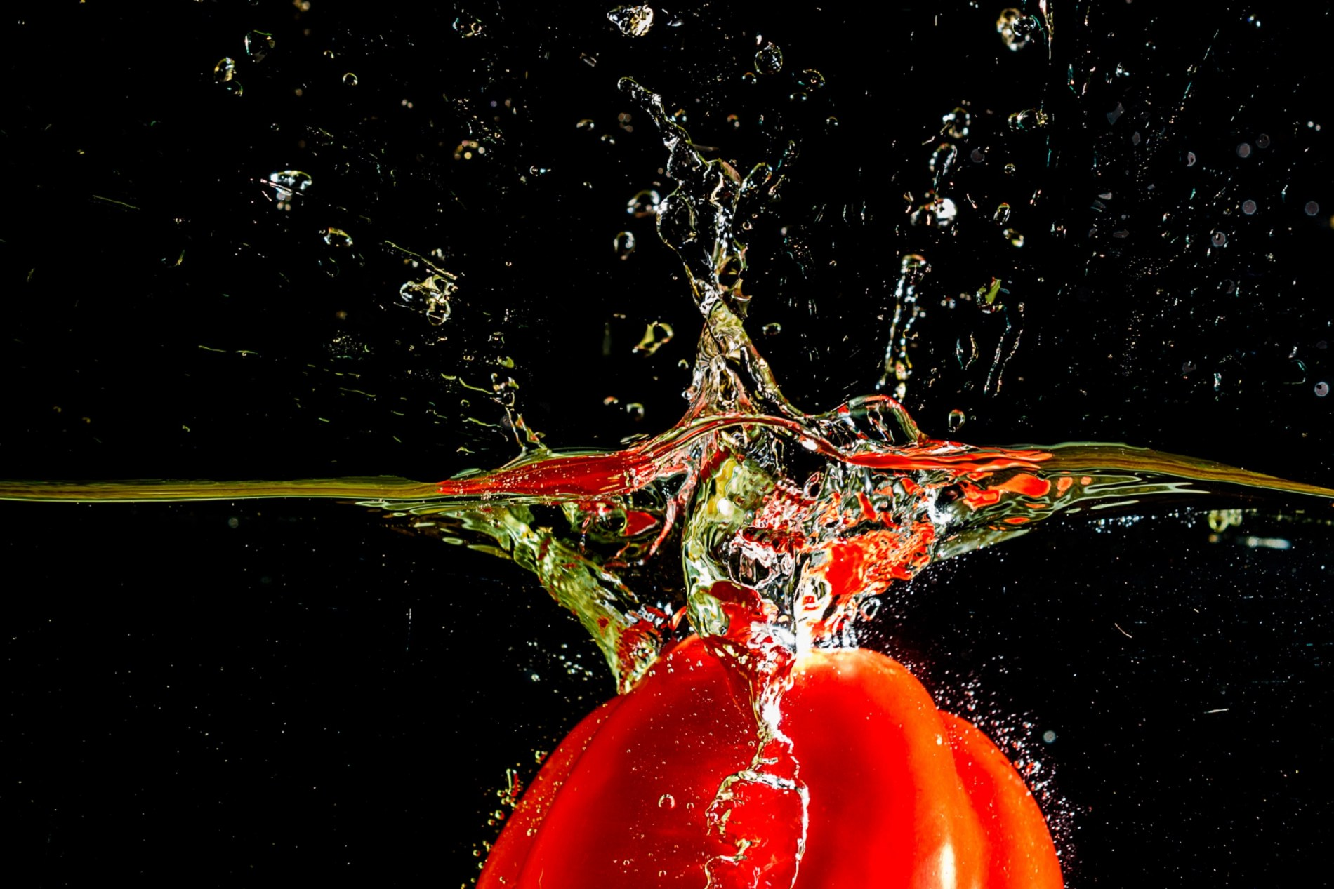 Rinie-20191206_rood_3553-water_2500px