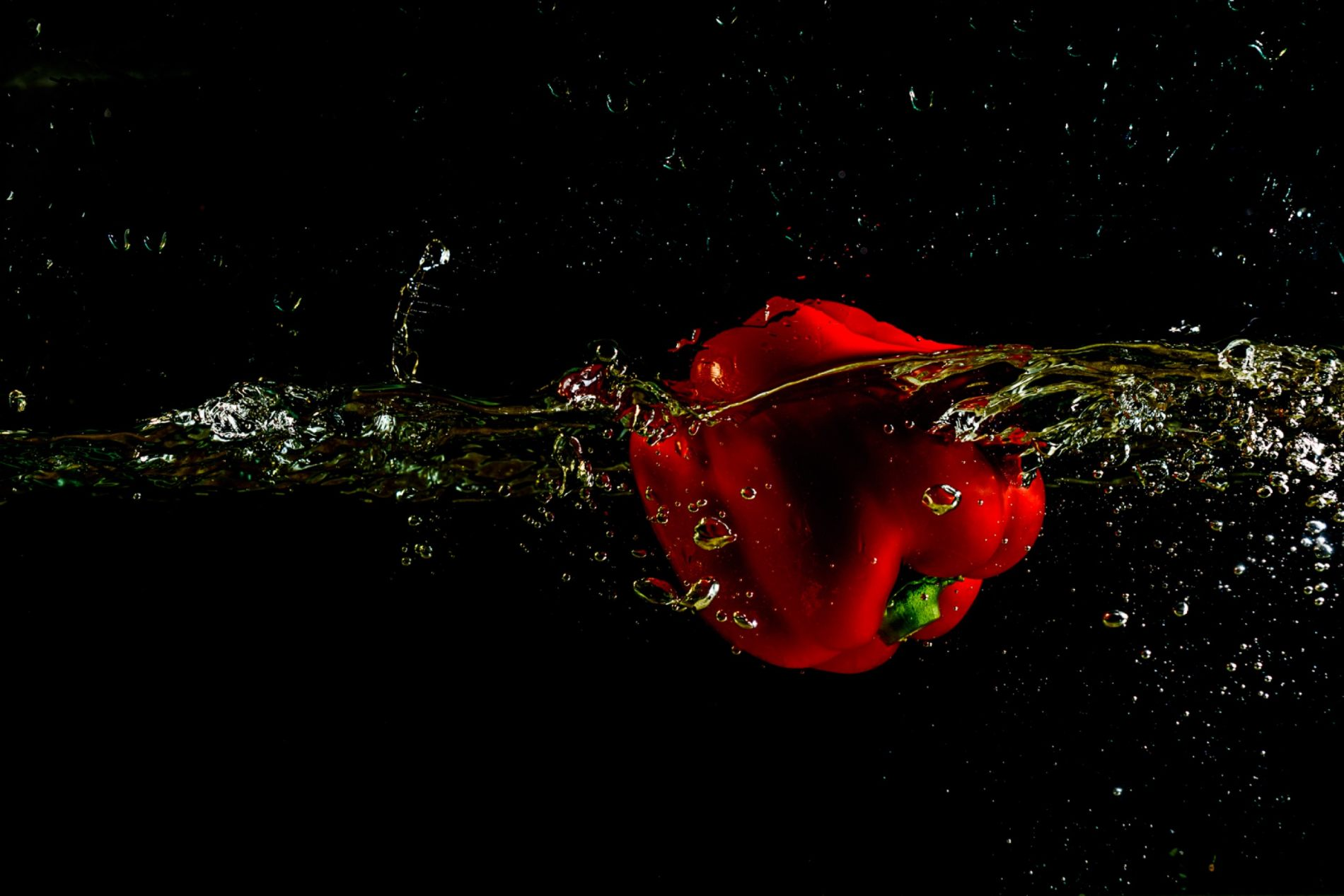 Rinie-20191206_rood_3609-water_2500px
