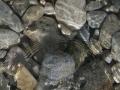 harrie-hulshof-stroming-rond-steen-s_2500px