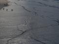 helma-hg3_2615-vroege-ochtend-langs-de-kust_2500px