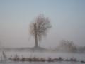 20191120-mist-aan-de-maas
