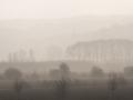 rinjo-landschap-ooij-1435