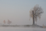 landschap012