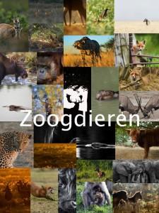 fotowedstrijd2016_zoogdieren_collage