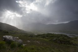 Helma Groenen - Ladys View zonneharp